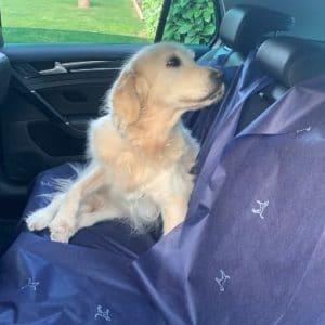 Teslay protector de asientos para mascotas
